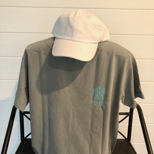 Teal Turtle Front